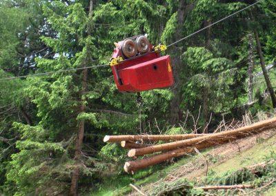 Krenn-woodliner-02